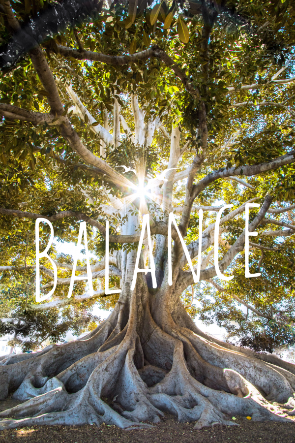 Balance formula.life
